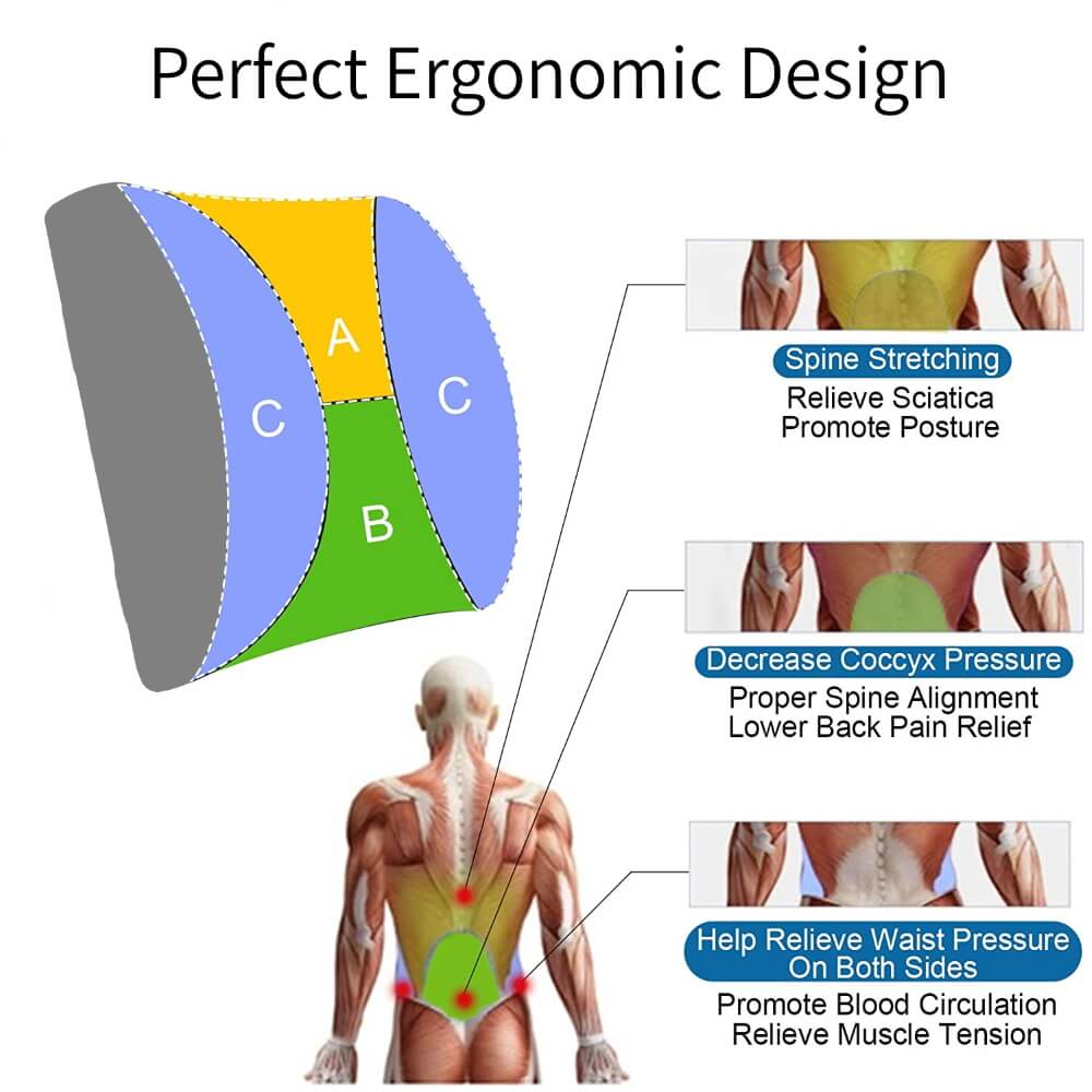Lumbar Support Pillow Design